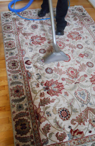 Professional Rug Cleaning In Orlando Dan The Carpet Man